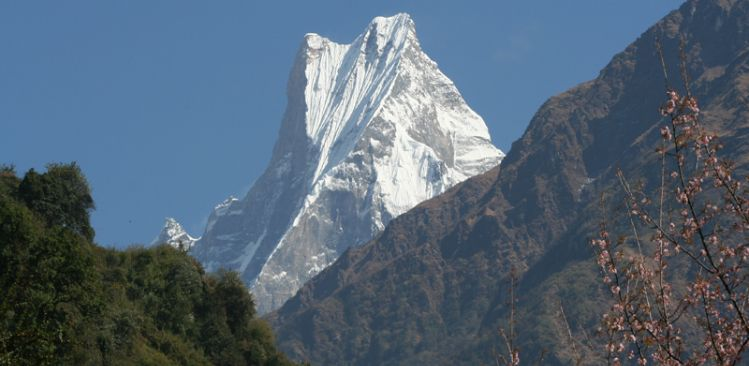 Mt. Fishtail 6,993m Seen From Chhomrong